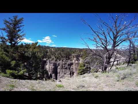 Yellowstone Picnic Trail by Ross