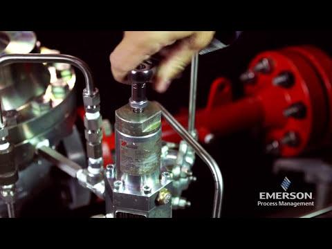 How Do I Maintain The Emerson Tartarini PRX Pilot?