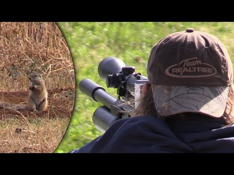 Ground Squirrel Hunting With The FX Impact | Part 1