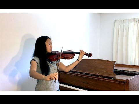 Sia - To Be Human feat. Labrinth (Violin Cover)