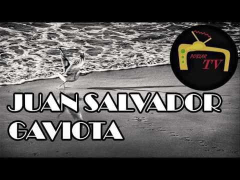 Juan Salvador - Gaviota Richard Bach (resumen, analisis y reseña libro completo)