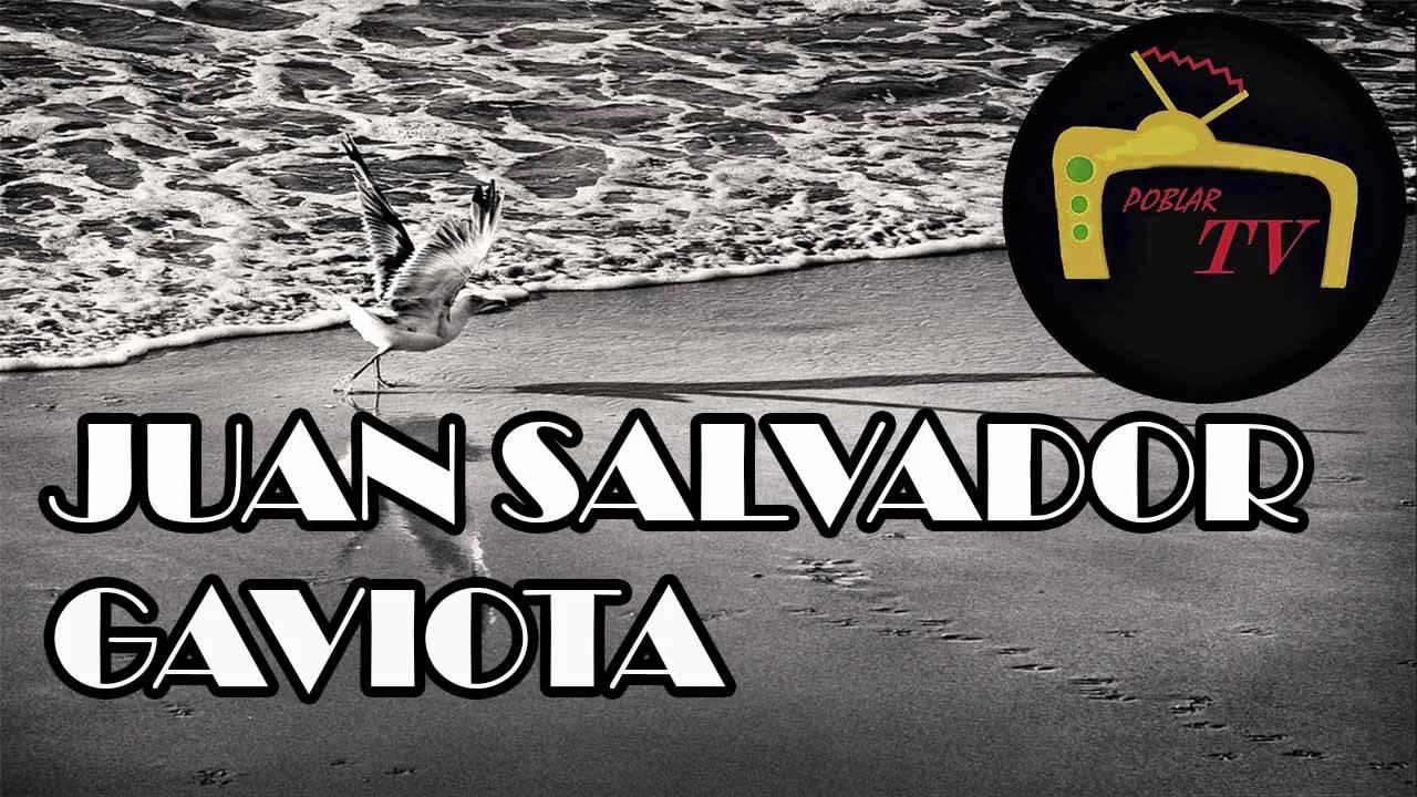 Juan Salvador - Gaviota Richard Bach (resumen, analisis y