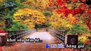 Karaoke Chuyến Đò Không Em - Dương Hồng Loan Ft. Lưu Chí Vỹ