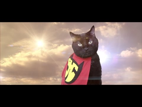 Super Hero Cat in You (Official Music Video) – N2 the Talking Cat S4 Ep1