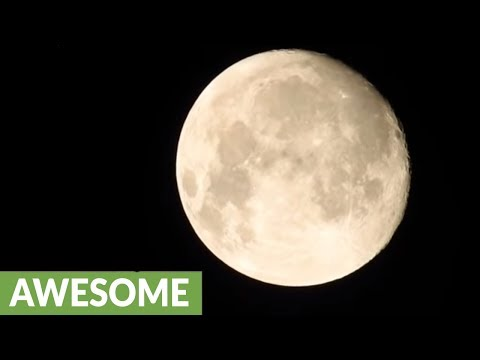 Camera Zoom Incredibly Shows the Moon In Great Detail