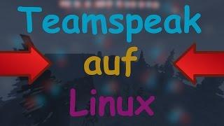 Teamspeak auf LINUX INSTALLIEREN! GANZ EINFACH! | German / Deutsch | HD |