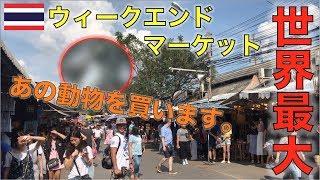 【カワウソ密輸絶対ダメ】バンコクで買い物するならここ!土日限定の市場チャトチャック・ウィークエンド・マーケット!