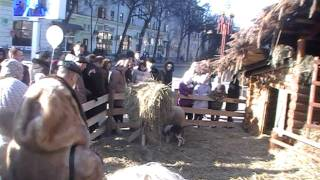 """He Was Born In A Manger"" Orthodox Christians Celebrate Xmas"