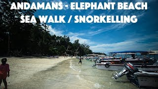 Elephant Beach Havelock   Snorkelling and Sea walk   Andamans Trips Day 4