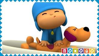 Покойо на русском языке - 🐕🛀 Грязная собака - Сезон 2 - Серия 26 - Веселые, смешные мультики!