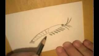 Art Snacks - Krill