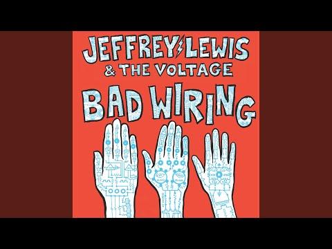 So ist Jeffrey Lewis and the Voltage neues Album