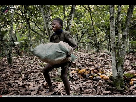Is Cocoa Produced Ethically?