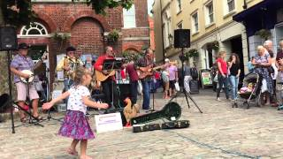 Acoustic Rooster at Bridport Market
