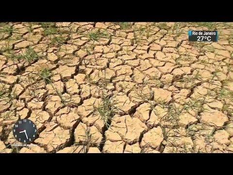 Estiagem já causa prejuízo de R$ 300 milhões no Rio Grande do Sul | SBT Brasil (15/02/18)