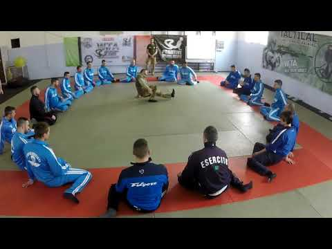 Tactical Functional Training® Physical Conditioning for Soldiers and Special Forces