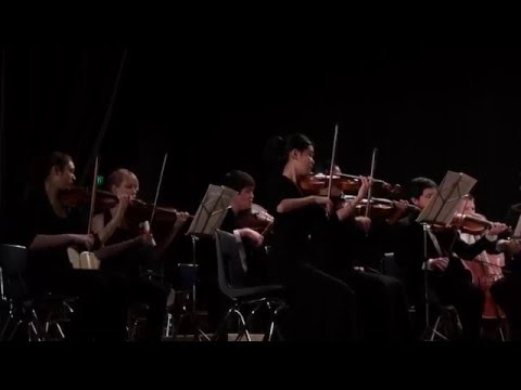 Metropolitan Youth Symphony, MYSfits String Ensemble, Portland, Oregon