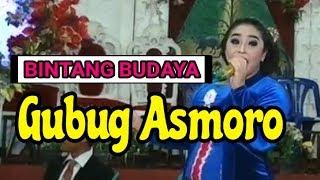 Campursari BINTANG BUDAYA - Gubug Asmoro - live Panggungan Magelang - Selo Community Production