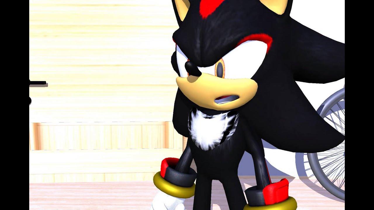 Shadow The Hedgehog Unpleasant Visit