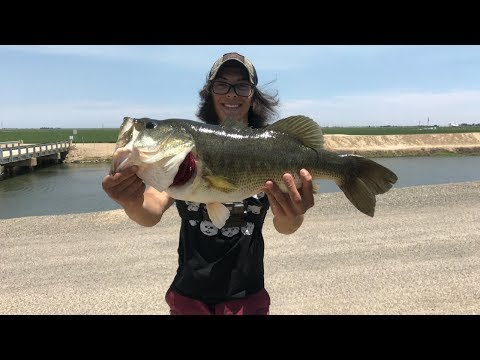 BIGGEST BASS OF MY LIFE OUT OF A CANAL!!!