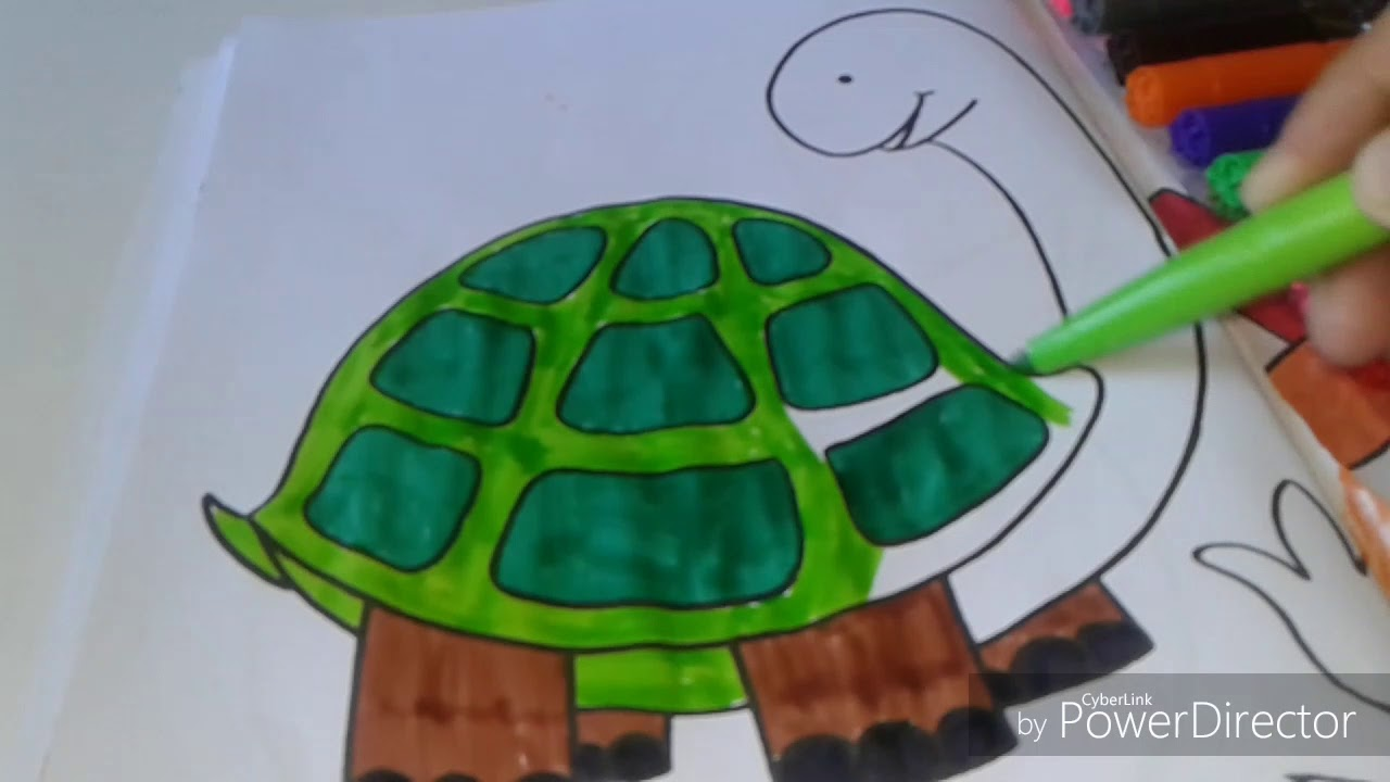 HOW TO COLOR TORTOISE COLORING PAGE FOR KIDS TO LEARN. - YouTube