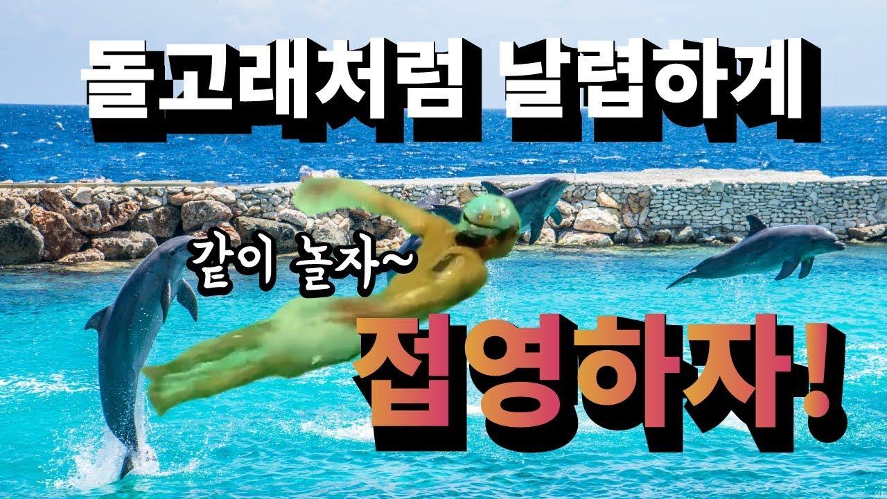 수영강습기초 Chapter7  접영 리마스터