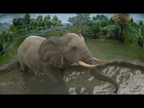 Augmented Reality (AR) - Illusion 3D Art Museum, Melaka (3)