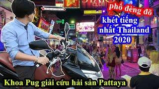 Hải Sản Ngập Mặt - Khoa Pug Giải Cứu Phố Đ.è.n.Đ.õ Khét Tiếng Pattaya - Food Tour Thailand 2020