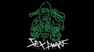 Sex Dwarf - Sensou Hantai [2019 Noisy Raw Punk]