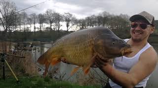 Šebkuv rybnik 2018