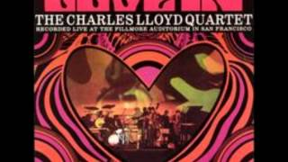 Play Memphis Dues Again - Island Blues (Live)
