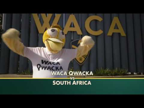 Cricket Australia M&C Saatchi
