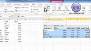 Piovat Table Options Group Sort Filter In Ms Excel 2010 In Hindi In Hindi /Urdu In Video
