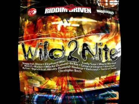 Shaggy Ft.Olivia - Wild 2 Night