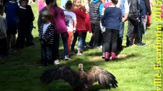 2015 fete chasse 0486