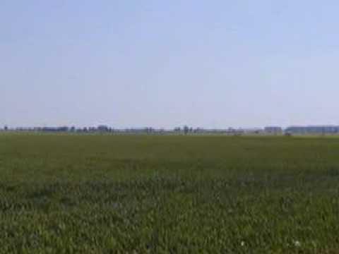 Green Fields of France