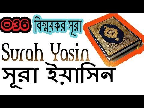 Surah Yasin | Bangla Translation | Surah Yasin Beautiful Recitation ByMishary Al Afasy (Bengali)