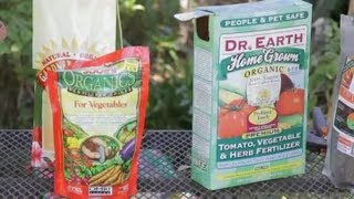 How Often Should You Fertilize Tomato Plants Garden