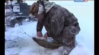 Рыбалка с Радзишевским  На озере Воже .
