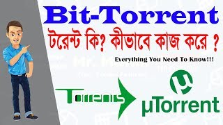 What is Torrent? | How Torrents work? | How to Download Torrent File? [ Bangla/Bangali ]