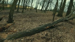 DJI FPV Drone Acro - Back into the woods & 99mph test (Packs 12, 13, 14)