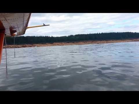 Huge Log Rafts towed by Tug Boat filmed by Dehavilland Beaver Seaplane