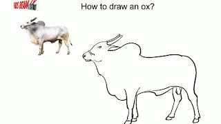How to draw an ox - step by step - easy drawing -  art for kids