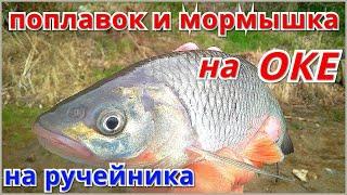 Рыбалка на ОКЕ в начале мая 2020 Ловля в проводку и на мормышку Ручейник лучшая наживка