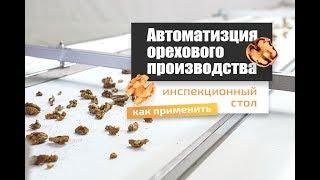Для чего в переработке ореха инспекционный стол? Обзор транспортерной ленты