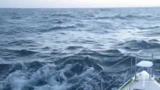 Los Roques 2014 - Lagoon 380 Catamaran Sailing Trip