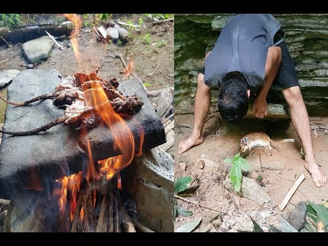 Primitive Technology: Animal Traps and Cooking Primitive Way