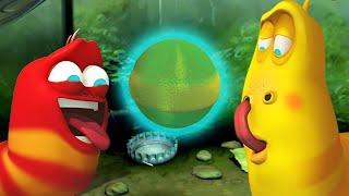 LARVA - PODER PSÍQUICO   Dibujos animados para niños   WildBrain
