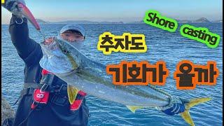 #쇼어캐스팅 ㅣ 추자도 둘째날 오후 ㅣ옆 포인트에서는 135cm가 나왔다는데... ㅣ #shorejiggjing #제주도쇼어지깅 #지깅낚시
