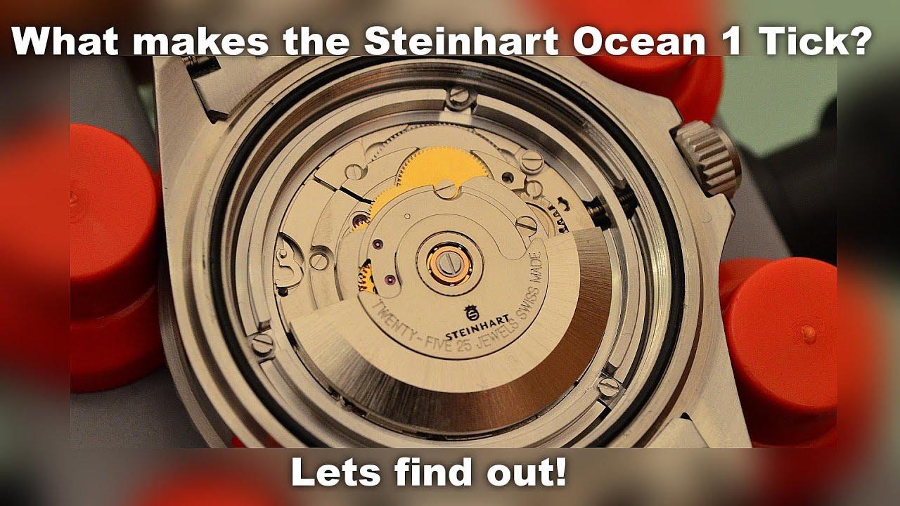 Inside the Steinhart Ocean 1